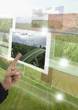 Precision Agriculture Screens